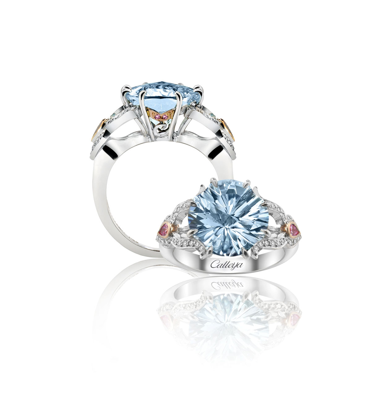 Ring Calleija - Strategy, Art Direction, Branding, Graphic & Digital Design Advertising Pacifica agency Byron Bay